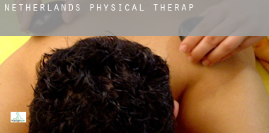 Netherlands  physical therapy