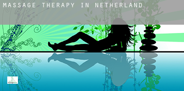 Massage therapy in  Netherlands